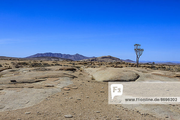 Landschaft im Namib-Naukluft-Nationalpark  Namibia