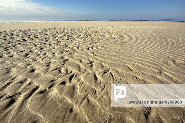 Sandrippelmuster am Strand  bei Hvide Sande  Jütland  Dänemark