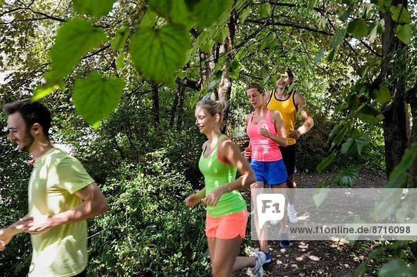 Gruppe von Menschen  die durch einen bewaldeten Park laufen.