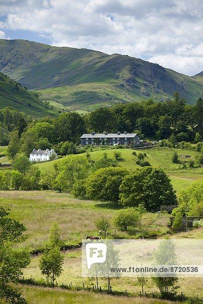 Nationalpark Großbritannien See umgeben Landhaus Hecht Esox lucius Cumbria Ortsteil