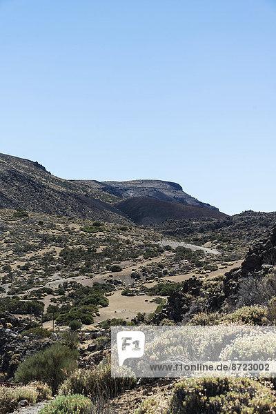 Vulkanlandschaft  mit Sträuchen bewachsene Hochebene Llano de Uruanca um den Teide  Parque Nacional de las Cañadas del Teide  Teide-Nationalpark  UNESCO Weltnaturerbe  Teneriffa  Kanarische Inseln  Spanien