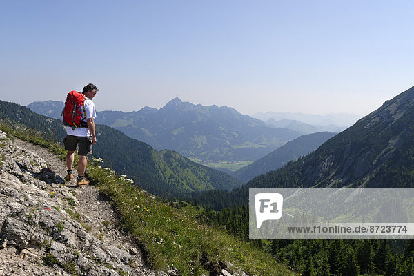 Bergsteiger auf dem Weg zum Taubenstein  Spitzingseegebiet  Oberbayern  Bayern  Deutschland