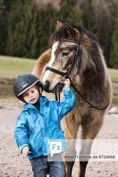 Young child wearing a riding helmet standing beside a pony  dun  with a bridle  Tyrol  Austria