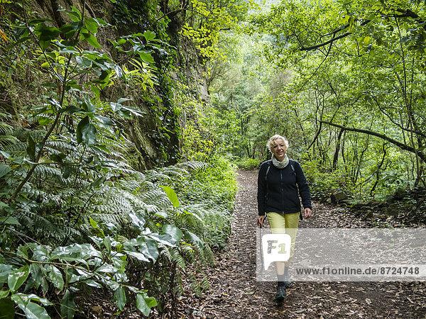 Eine Touristin wandert im Lorbeerwald von Los Tiles  La Palma  Kanarische Inseln  Spanien