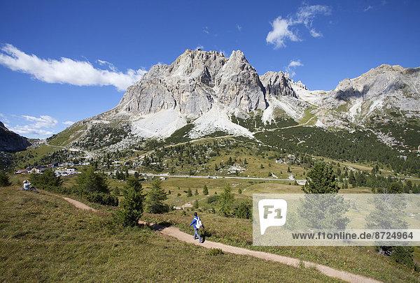 Dolomiten mit Tofane  Lagazuoi in der Mitte  Falzarego-Pass  Region Venetien  Provinz Belluno  Italien