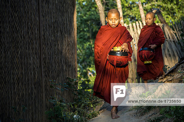 Buddhist novices with begging bowls at their morning begging tour  Mount Popa  in Bagan  Mandalay Division  Myanmar