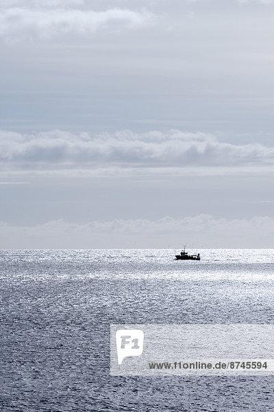 Silhouette  Ozean  Boot  angeln  Island
