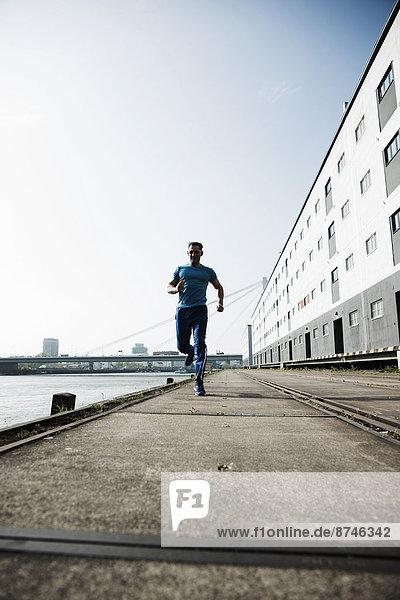 beladen  Mann  Lagerhalle  Lager  rennen  Dock  frontal  reifer Erwachsene  reife Erwachsene  vorwärts  Deutschland