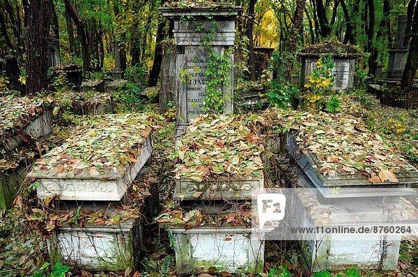 Warschau  Hauptstadt  Straße  Geschichte  Judentum  Friedhof  Polen