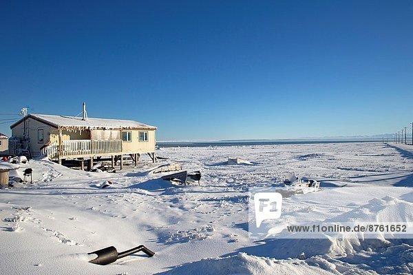 Vereinigte Staaten von Amerika USA Dorf Kaktovik Alaska Alaska