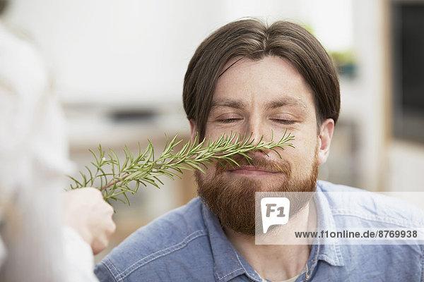 Mann riecht nach Rosmarinzweig