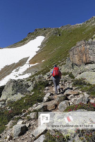 Austria  Vorarlberg  Woman hiking at Grafierjoch and Schafberg