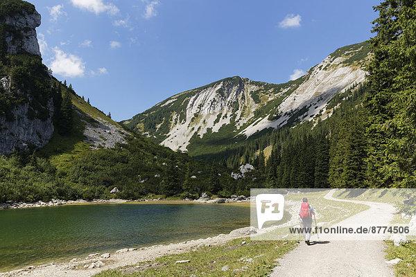 Deutschland  Bayern  Mangfallgebirge  Wanderer am Soinsee und Hochmiesing