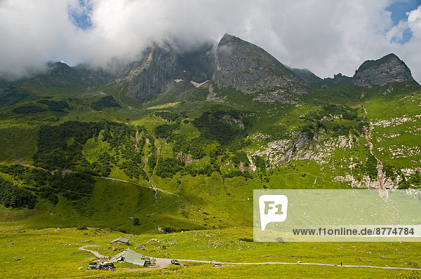 Deutschland  Bayern  Allgäu  Allgäuer Alpen  Ostseite von Hoefats