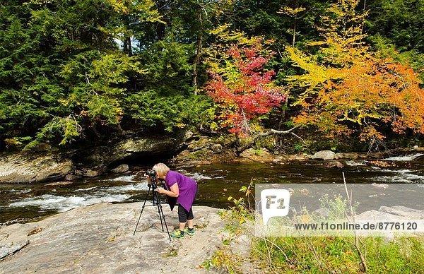 bedecken  nehmen  fallen  fallend  fällt  unterhalb  Tourist  Brücke  Norden  Gemälde  Bild  3  England  Laub  Montgomery  neu  Vermont  Waterville