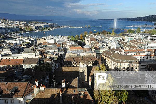 Dach  Springbrunnen  Brunnen  Fontäne  Fontänen  See  Flugzeug  Draufsicht  Zierbrunnen  Brunnen  Genf  Schweiz