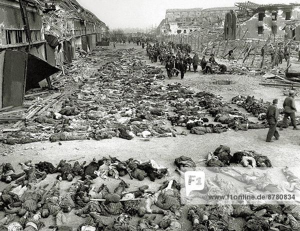 Freiheit  Vereinigte Staaten von Amerika  USA  Geschichte  Soldat  Krieg  amerikanisch  Reihe  Deutschland  Militär  Zweiter Weltkrieg  II.