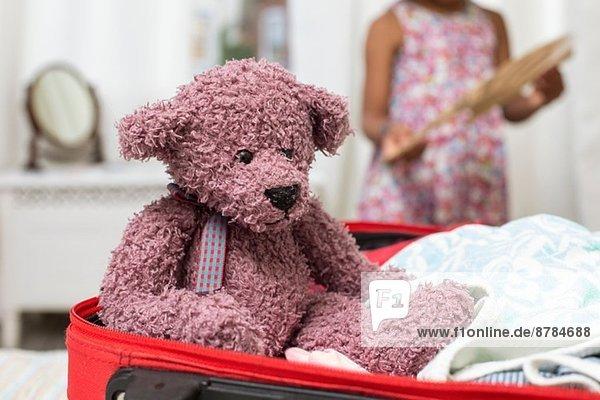 Teddybär im offenen Koffer