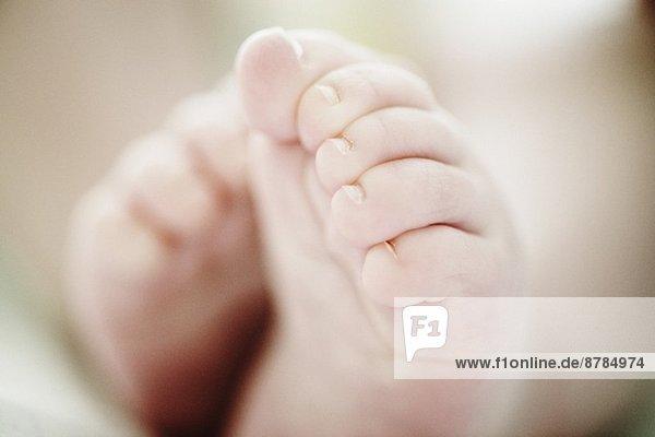 Nahaufnahme von 4 Monate alten Baby Boys Füße