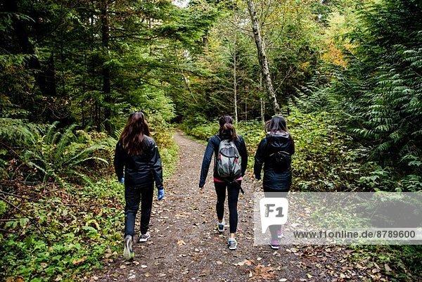 Drei junge Wandererinnen durch den Wald  Squamish  British Columbia  Kanada