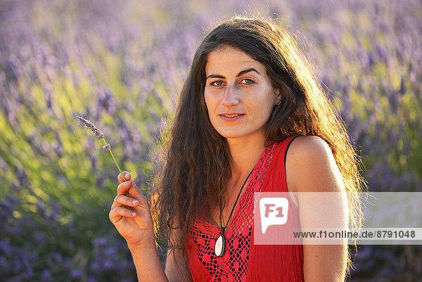 Frankreich  Europa  Frau  Blume  blühen  französisch  gehen  Sommer  Hut  Natur  braunhaarig  Feld  1  Provence - Alpes-Cote d Azur  20  Mädchen  Lavendel  Vaucluse