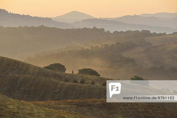 Europa  Ländliches Motiv  ländliche Motive  Morgen  Baum  Landschaft  Dunst  Tal  Nebel  früh  Hügel  Italienisch  Italien  Stimmung  Toskana