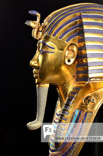 Profil Profile Reichtum Monarchie Schatz Gold Glück König - Monarchie Kobra Ägypten Mumie Stärke Geier