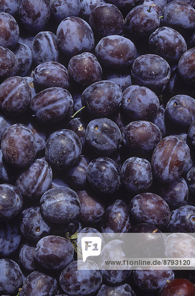 Veilchen  viola  Lebensmittel  Pflaume  Frucht  Größe