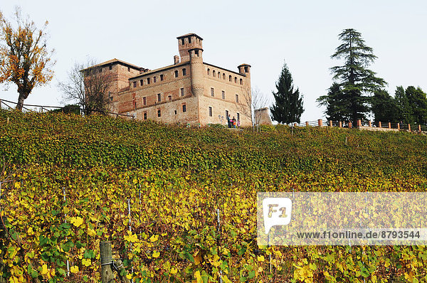 Italien Langhe Piemont