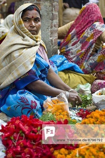 Frau Blume Großstadt verkaufen Gewürz Heiligkeit Festival Opfergaben Indien Varanasi