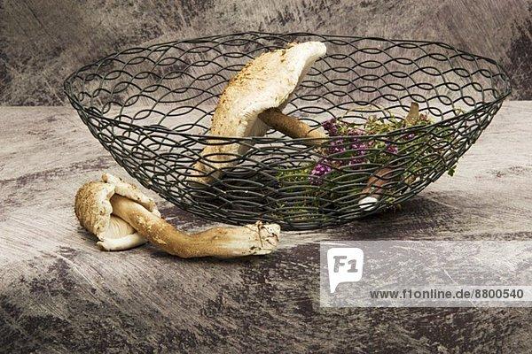 Frische Parasole und Kräuter im Drahtkorb