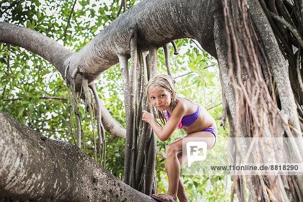 Tropisch  Tropen  subtropisch  Europäer  Baum  Mädchen  klettern