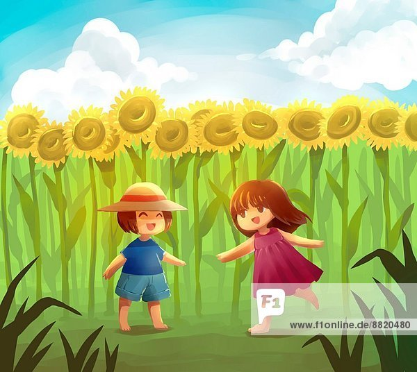 Sonnenblume  helianthus annuus  Fotografie  Freundschaft  Spiel  Feld  Symbol  Spaß