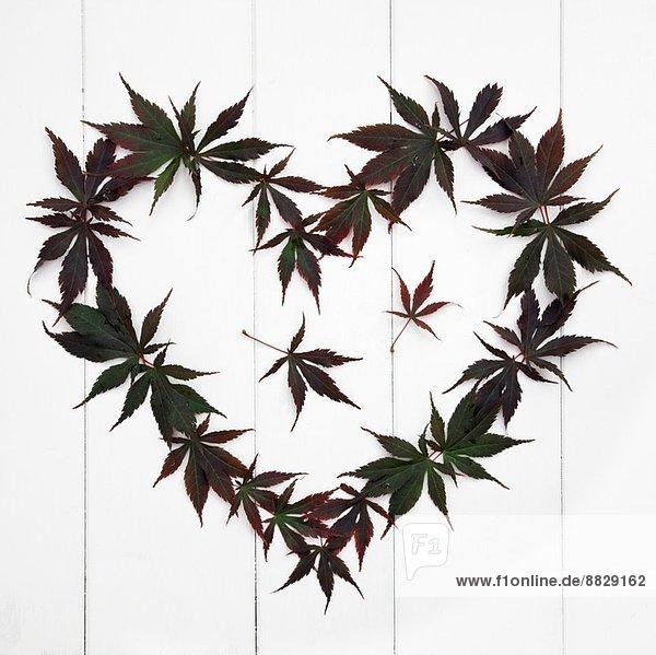 Form Formen arrangieren herzförmig Herz