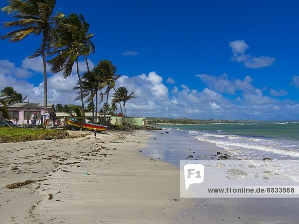 Karibik  Antillen  Kleine Antillen  Saint Lucia  Derriere Morne  Strand und Fischerboot