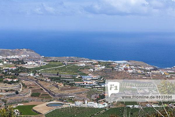 Spanien  Kanarische Inseln  Gran Canaria  Arucas und Felder
