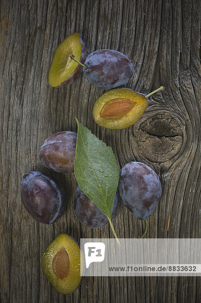 Pflaumen  Prunus domestica