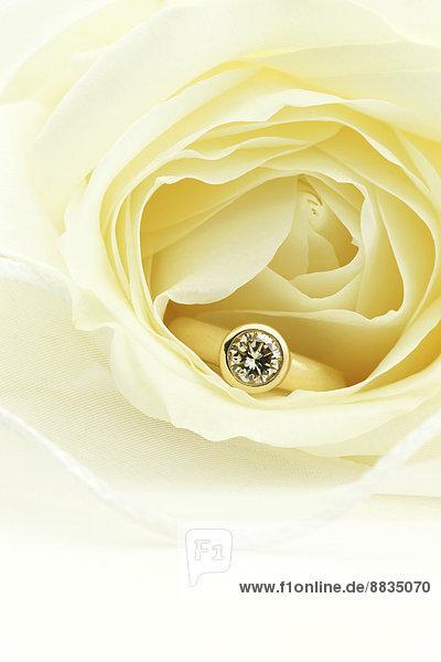 Ein Karat Diamant-Gold-Ring in Rosenblüte