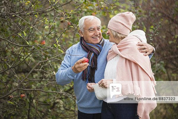 Senior couple picking apples while having a walk