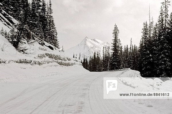 A winter snow covered part of the Maligne lake road in Jasper National Park Alberta Canada.