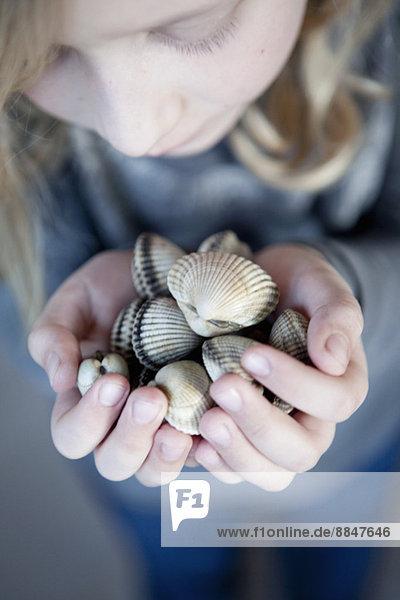 High angle view of girl holding seashells