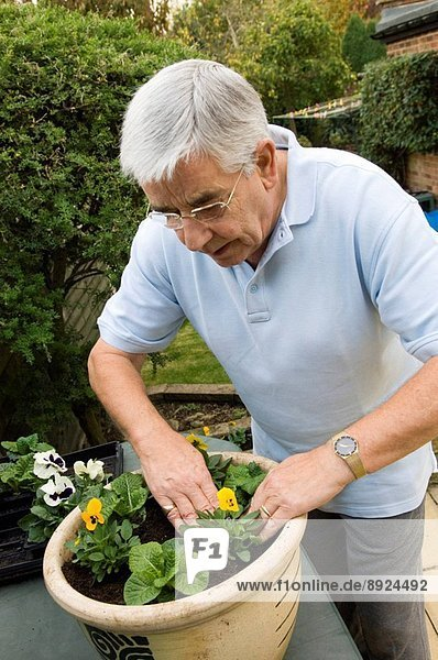 Activity is essential to us all. To be active is to be involved in life and to have people to see  places to go and things to do./nKeeping active helps elderly people avoid developing Alzheimer´s Disease  a form of dementia involving a loss of memory and