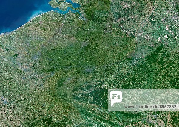 Belgium  True Colour Satellite Image. Belgium. True colour satellite image of Belgium. North is at top. Vegetation is green  water is blue and bare ground is light brown. Belgium is bordered by the Netherlands to the north  Germany to the east  Luxembourg to the south_east and France to the south. The Dutch Westerschelde estuary enters the North Sea at top left. The image used data from LANDSAT 5 & 7 satellites.