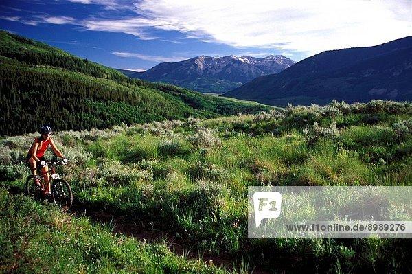 Colorado. Woman Mountain Biking On Teocalli Ridge.