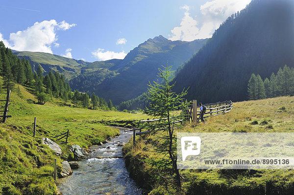 Bergbach in den Alpen  Seebachtal  Österreich