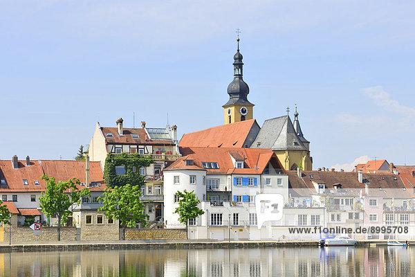 Stadtansicht  Main  Kitzingen  Unterfranken  Bayern  Deutschland