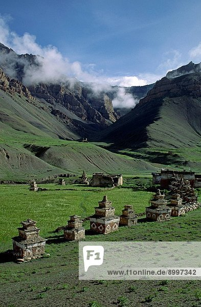 A train of YAKS laden with CARGO climbs toward CHHARKA PASS on a barren HIMALAYAN hillside _ DOLPO DISTRICT  NEPAL