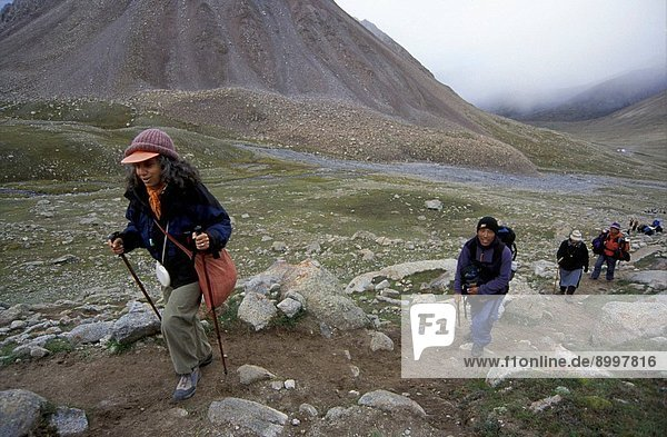 A loaded YAK & PRAYER FLAGS on the DOLMA LA 18 395 ft.  the highest point of the KORA around MOUNT KAILASH  TIBET