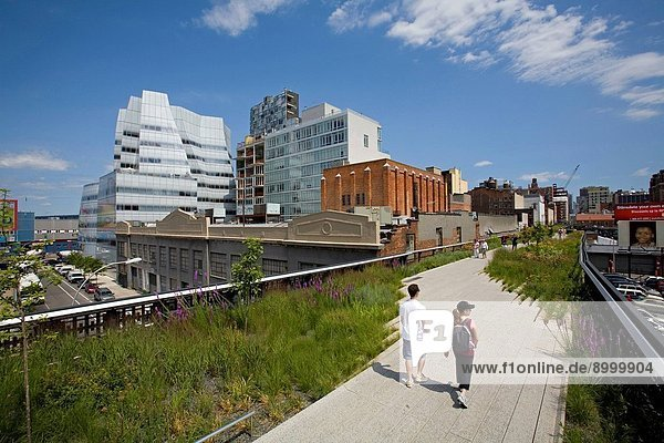The High LIne Park  Chelsea  Manhattan  New York
