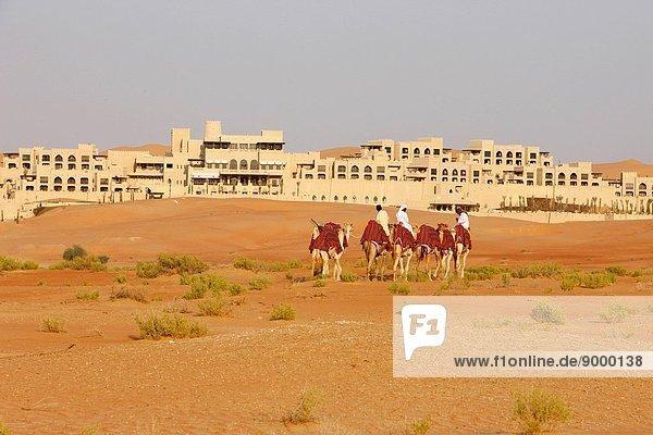 Woman walking in Liwa desert  United Arab Emirates.